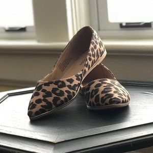 Maurices Leopard pointed Flats